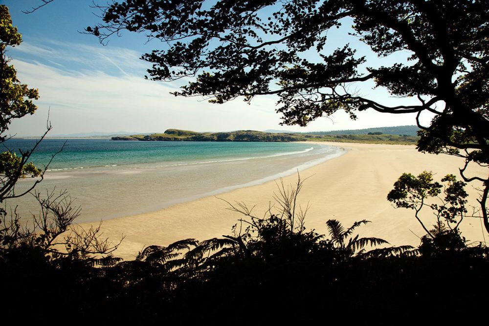 PaulMcGuckin-Marble Hill Beach