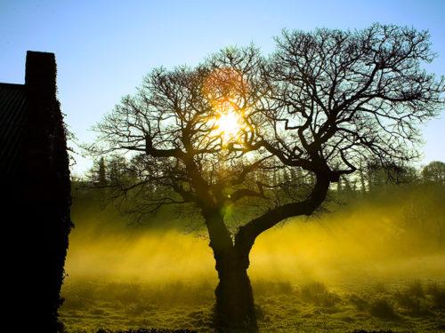 PaulMcGuckin-Ramelton Sunrise