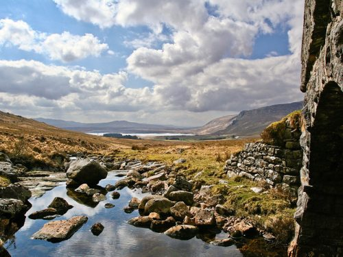 PaulMcGuckin-Landscapes 2